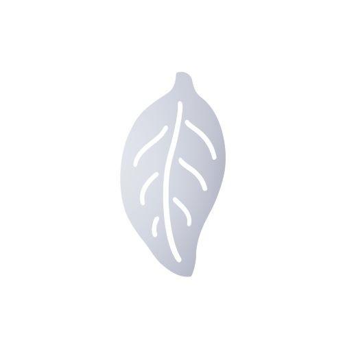Liść magnolii