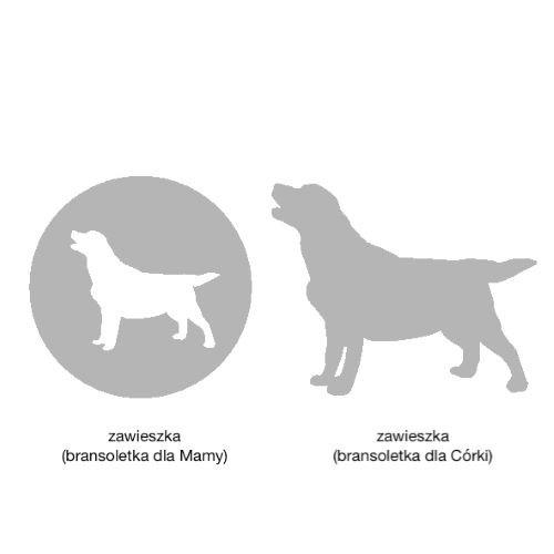 Labrador zestaw